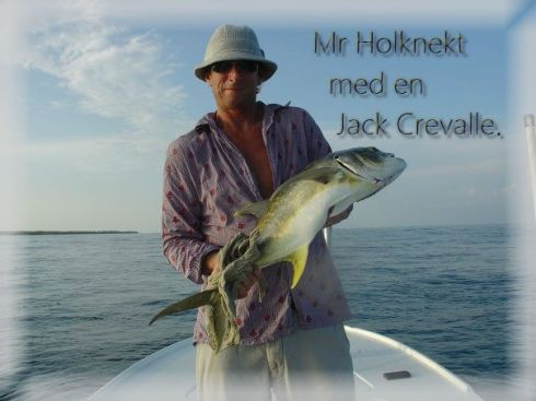 Holknekt Jack Crevalle2