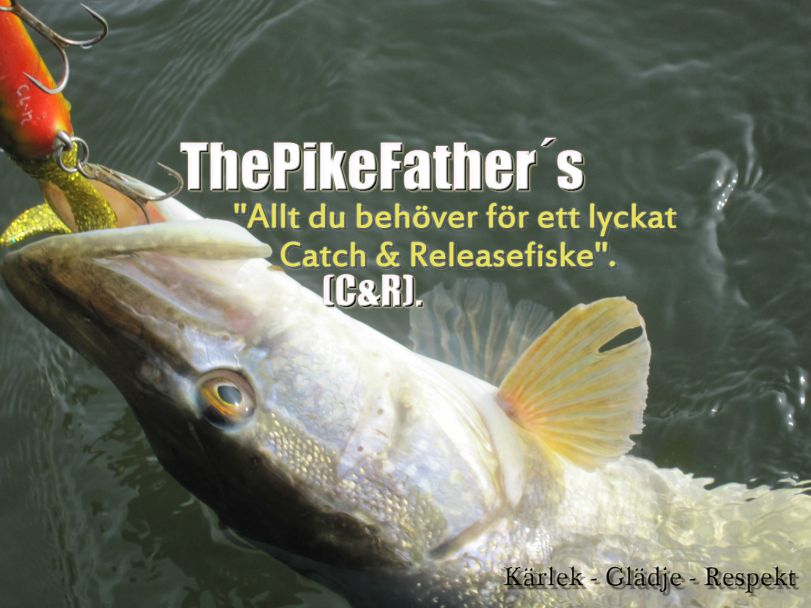 Catch n Release2