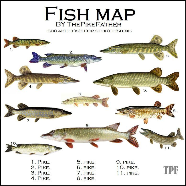 FiskkartaTPF2