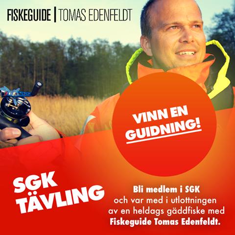 Tomas Edenfeldt