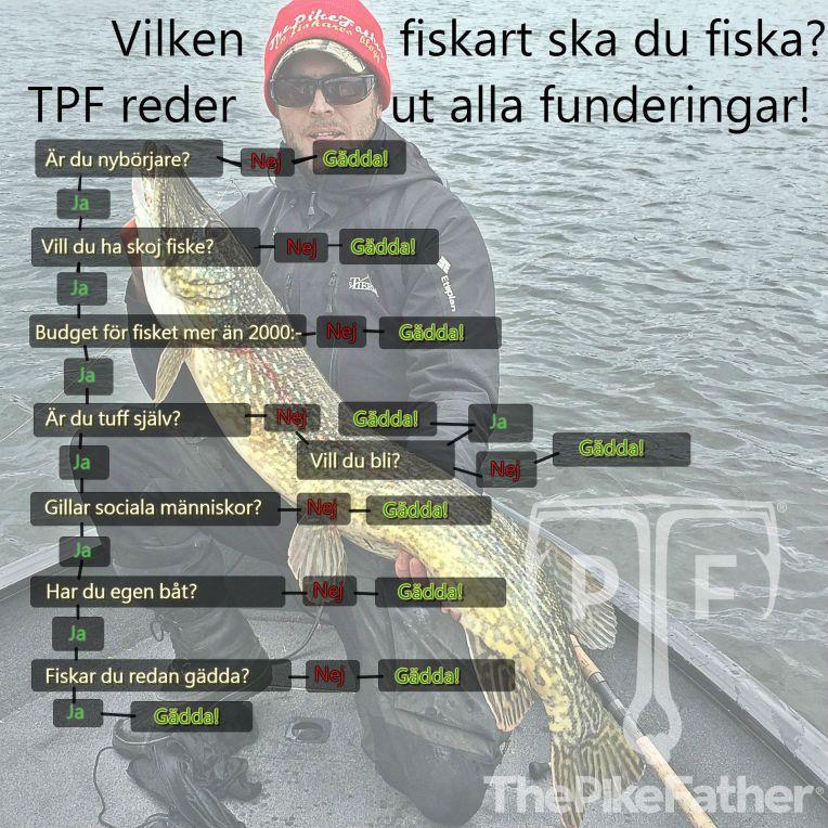 Välja fiskeart